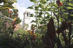 alcazar-plantings-edges