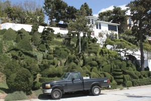 gonzo-topiary-overview