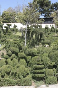 gonzo-topiary-section-of-slope