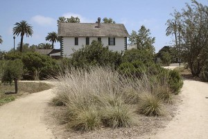 mccoy-house-with-grasses