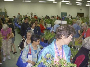 plant-sale-shoppers