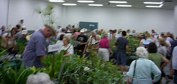 Inside the plant sale