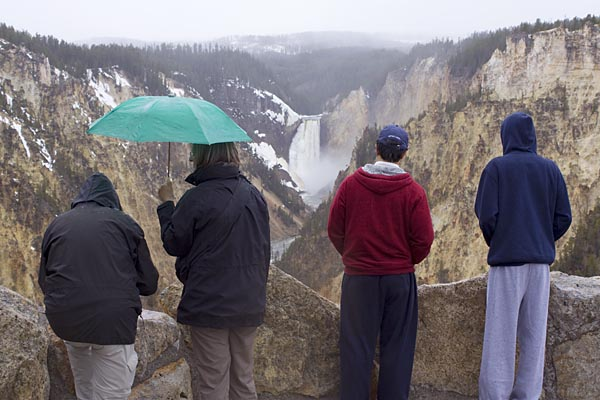 Tourists at the Lower Falls of the Yellowston River