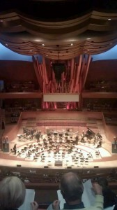 Disney Hall interior with the french fries